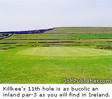 The Par-3 11th Hole