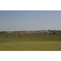 Horses graze near the 15th hole at Royal North Devon Golf Club in England.