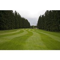 Dense woods like the 10th fairway at Royal Golf Club Marianske Lazne. Water also runs along the left side.