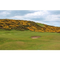 A gorse-lined dune sits near the seventh green at Murcar Links Golf Club in Aberdeen, Scotland.