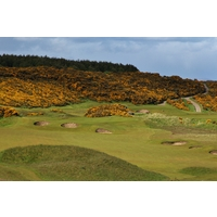 A hill of yellow gorse lights a fire to the setting of the Championship Course at Royal Dornoch Golf Club in the Highlands of Scotland.